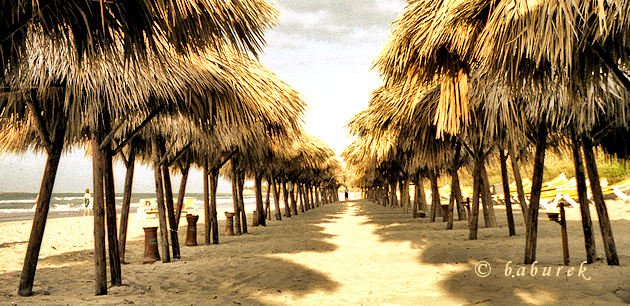 Tropical beach and straw sunshades