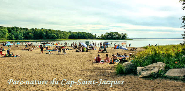 Beach at Parc-nature du Cap-Saint-Jacques