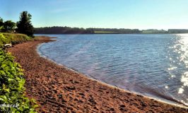 Beach at Cornwall / Charlottetown KOA campground